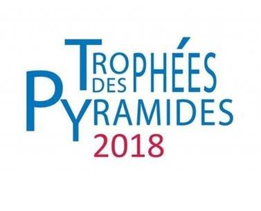 Dossier de presse : Cérémonie de remise des Pyramides d'Argent 2018 de la FPI Auvergne 31 mai 2018