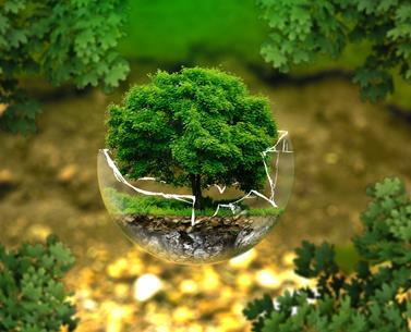 Environnement SA